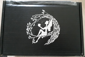 Fairyloot box